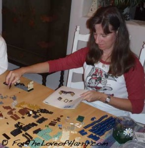 Me Building a Harry Potter Lego Castle