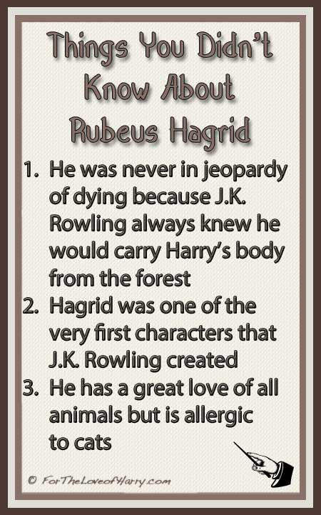 Things You Didn't Know About Hagrid