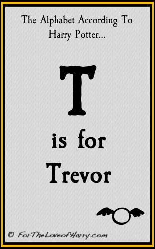 T is for Trevor