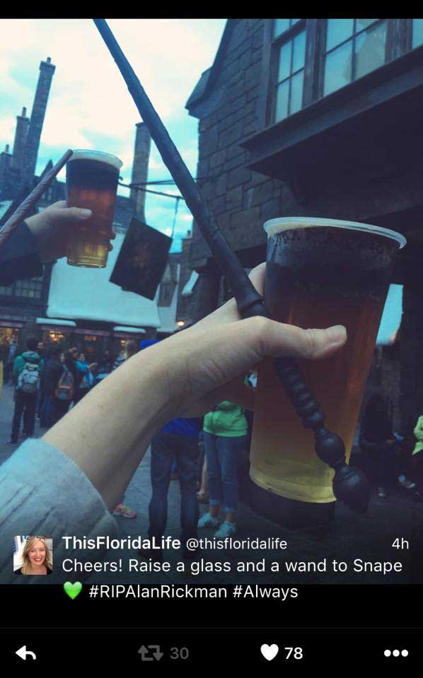 Raise A Glass For Snape