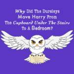 Movie #2 – Why Was Harry Moved From The Cupboard To A Bedroom?